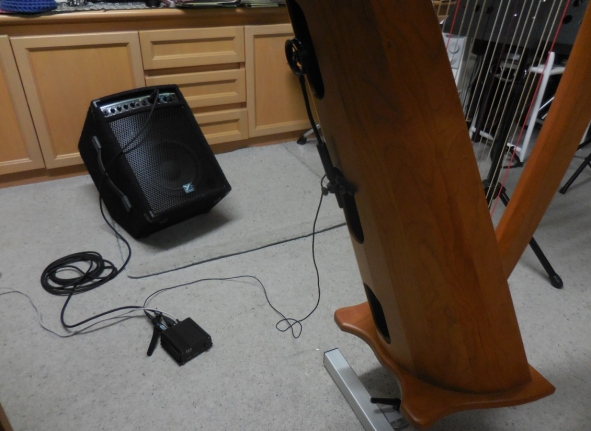 Set-Up showing mic connected to Phantom Power Box and then into the amp.